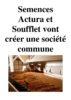 Semences Actura et Soufflet vont créer une société commune