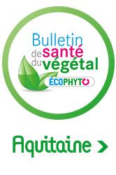 bsv-aquitaine